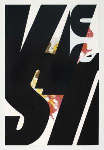'Virus Print 4 of 8', 2009, silkscreen print onto 300gsm Somerset Satin White Paper, 46x70 cm