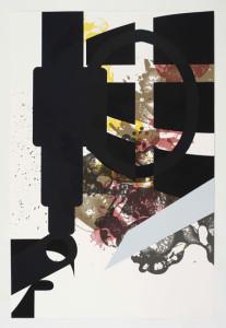 'Virus Print 5 of 8', 2009, silkscreen print onto 300gsm Somerset Satin White Paper, 46x70 cm